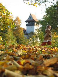 Insel der Jugend im Herbst © Henrik G. Vogel / pixelio.de